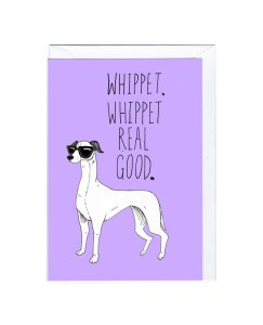 whippet-real-good